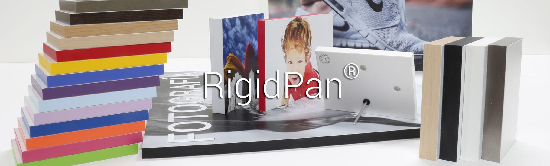 5.RigidPan