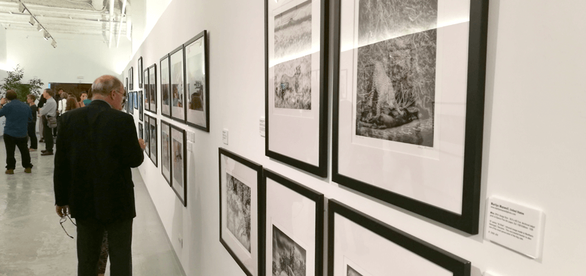 Tot Marc enmarca las obras de los 9th Pollux Awards
